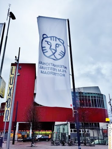 IFFR  International Film Festival Rotterdam