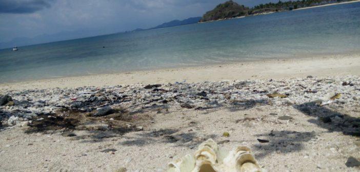 """Travelblog: """"In Gili Sudak geniet je elke seconde van de natuur, de mensen en het eten."""""""
