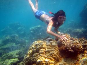 De Karimunjawa Archipel: een Betaalbaar Paradijsje