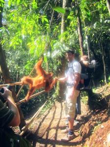 Wati, de orang-oetan, die graag dichtbij mijn man wilde zijn