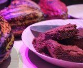 Organic Cocoa Project La Galigo, de pionier op het Chocoa Festival 2019 in Amsterdam
